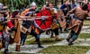31% Off General Admission for One at Brevard Renaissance Fair