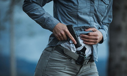 $18.75 for Florida Online Concealed Weapon Certification Class ($90 Value)