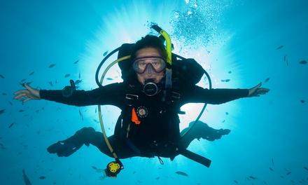 Just U Dive