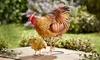 Mother Hen and Chick Metal Garden Ornament Set