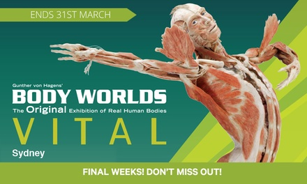 $25 for Ticket to Body Worlds Vital, until 31st March, Sydney Town Hall (Up to $32 Value)