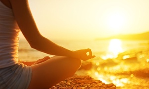 Trendimi: Online Mindfulness Course from Trendimi (90% Off)