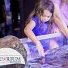 Up to 54% Off Admission and Activities at Austin Aquarium