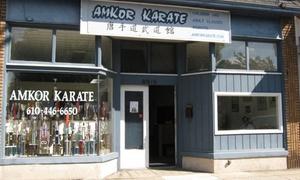 AmKor Karate Institutes Upper Darby: 10 Martial Arts Classes at Amkor Karate Institute (80% Off)