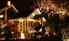 Christmas LED Chaser Lights