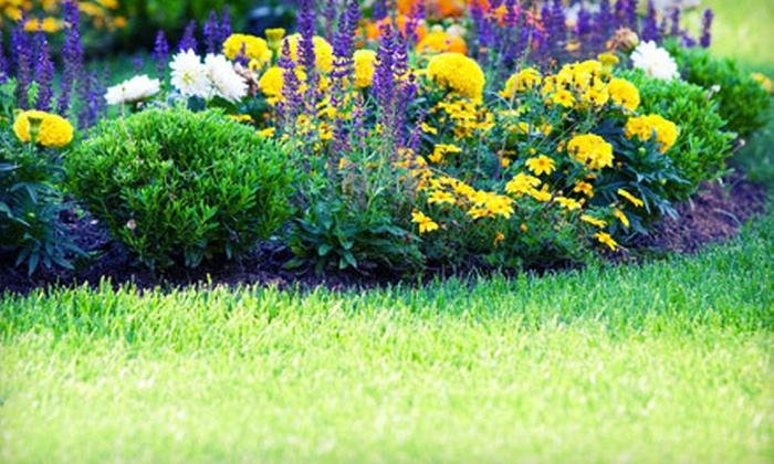 Trust Landscape Group - Framingham: $45 for $90 Worth of Lawn-Care Services from Trust Landscape Group