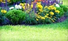 Trust Landscaping Group - Framingham: $45 for $90 Worth of Lawn-Care Services from Trust Landscape Group