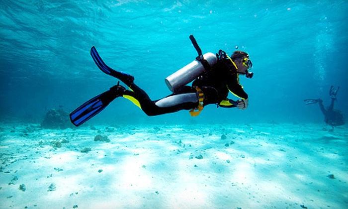Scuba Monkey Dive Center, LLC - Alachua: $99 for Discover Scuba Experience from Scuba Monkey Dive Center, LLC in Alachua ($199 Value)
