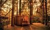 Périgord Vert : 1 à 3 nuits en cabane/Love' Nid avec petit-déjeuner