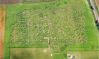 Entry for Two or Four or a Season Ticket for One to Thornton Abbey Maize Maze (Up to 34% Off*)