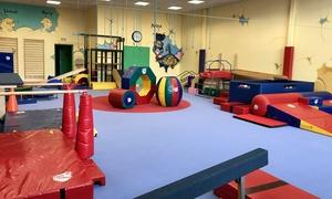 Go Baby Gym Beauzelle: 1 ou 3 séances découverte d'1h de baby gym ou kid gym dès 7,90 € avec Go Baby Gym Beauzelle
