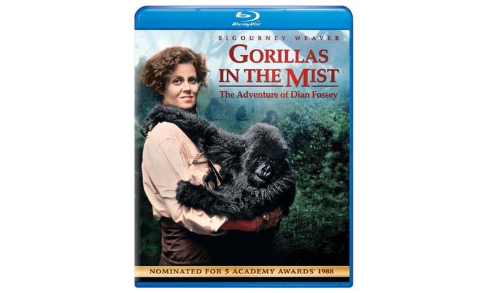 Gorillas in the Mist on Blu-ray: Gorillas in the Mist on Blu-ray