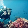 Up to 62% Off Scuba Course in Syosset