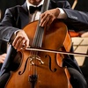 Alexandria Symphony Orchestra – Up to 55% Off