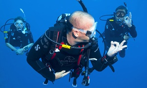 Sydney Dive Safari: Beginners' Scuba Dive Experience for One ($59) or Two People ($109) with Sydney Dive Safari (Up to $298 Value)