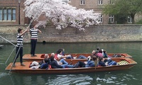 45-Minute Cambridge Punting Tour Weekend or Midweek from The Cambridge Punting Company