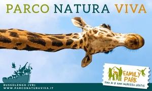 Ingressi Parco Natura Viva Bussolengo: Ingressi al Parco Natura Viva per tutta la famiglia. Zoo Safari e Parco Faunistico a Bussolengo