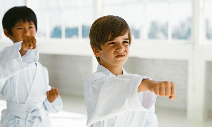 Metro Karate Academy - Multiple Locations: 10 Classes or 1 Unlimited Month of Tae Kwon Do with a Uniform at Metro Karate Academy (Up to 72% Off)