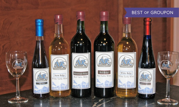 North Ridge Winery - North Branch: Wine Tasting for Two or Four at North Ridge Winery (59% Off)