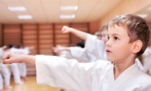 Championship Martial Arts: One or Two Months of Martial Arts or Kickboxing Classes at Championship Martial Arts (Up to 85% Off)