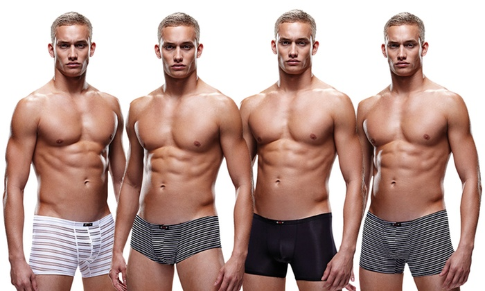 Envy Menswear Men's Microfiber Trunks or Boxer Briefs. Multiple Options Available.