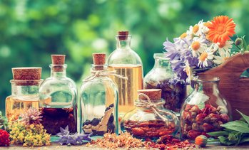 93% Off Herbalist Course from International Open Academy