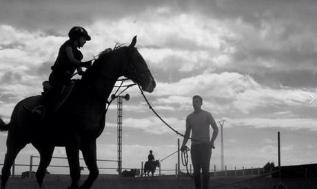 4, 8, 12 o 24 clases de equitación para 1 persona desde 34,95 € en Escuela Ecuestre Gran Canaria