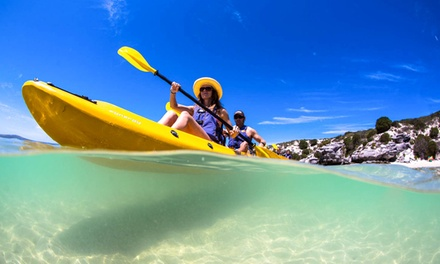 Sea Kayaking Tour in Langebaan from R229 for One with Gravity Adventures (Up to 50% Off)