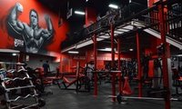 One-Month Gym Pass and Two PT Sessions Each for One ($19) or Two ($35) at World Gym Surfers Paradise (Up to $298 Value)