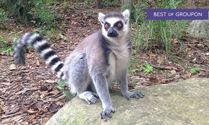 Kentucky Down Under Adventure Zoo: Two or Four Admissions to Kentucky Down Under Adventure Zoo (Up to 43% Off)