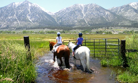 Trail Rides for Two, or Private Lessons for One or Two at Sheridan Creek Equestrian Center (Up to 48% Off)