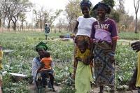 Acción contra el Hambre: Dona 3€ al programa 'Jardines de la Salud' y ofrece una alimentación saludable a miles de niños