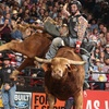 PBR Real Time Pain Relief Velocity Tour –53% Off Bull Riding