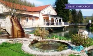 SPA im Wellness Resort Romantika: Tageskarte für den Sauna-Bereich, opt. inkl. Vital-Drink, im SPA im Wellness Resort Romantika (bis zu 64% sparen*)
