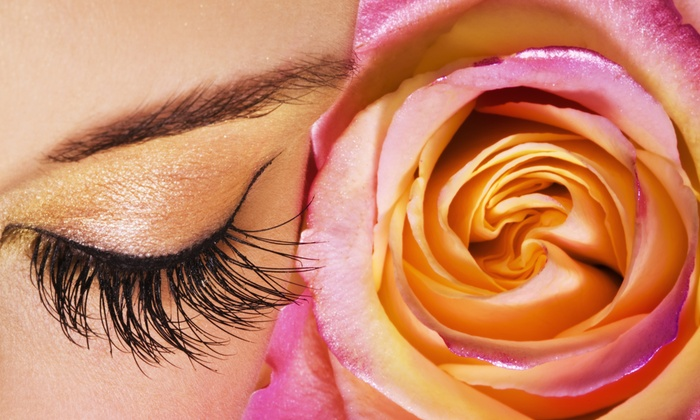 Bloom Beauty - Beverly: One or Three Eyebrow-Waxing Sessions at Bloom Beauty (Up to 51% Off)