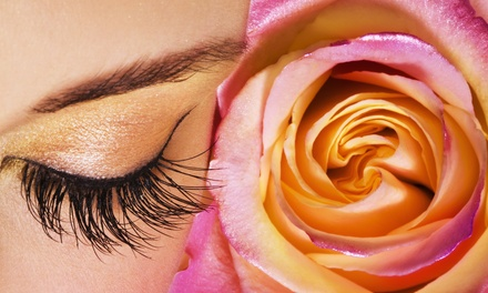One or Three Eyebrow Waxes, One Eyelash Tint, or a Brow-and-Lash Package at Bloom Beauty (Up to 59% Off)