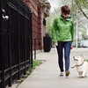 Up to 58% Off Dog Walks from Sir Gatsby Pets