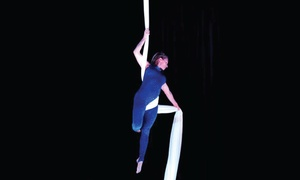 Metro Movement and Aerial Arts: Four or Eight Aerial-Arts Classes at Metro Movement and Aerial Arts (Up to 63% Off)