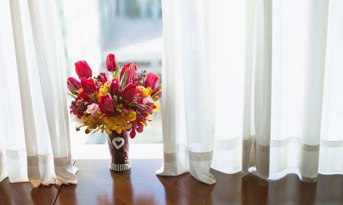 Blinds For Less - Charlotte: $110 for $200 Worth of Window Treatments — Blinds For Less