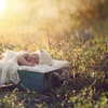 $120 for a 60-Minute Newborn Photography Session ($399)