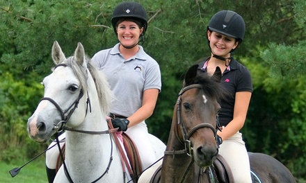 Horseback-Riding and Grooming Lesson for One or Two at Spruce Meadow Farm (Up to 71% off