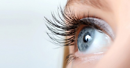Groupon To 70At Eyelash Up Extensions ae DubaiSave zpMGLqSVU