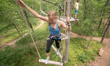 Aerial Adventure Course for Two, Four, or Six People at Tree To Tree Adventure Park Idaho (Up to 39% Off)