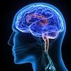77% Off EEG Neurofeedback Scan @ Chiropractic Nutrition Center