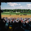 Equestricon Horse Racing Convention – Up to 23% Off