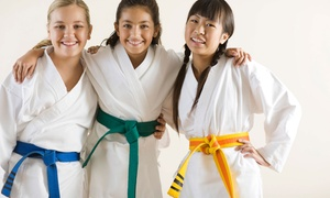 Alicea's Martial Arts Studio: Two-Week Intro Course with Uniform or One Month of Grappling Classes at Alicea's Martial Arts Studio (Up to 76% Off)