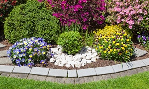 Up to 50% Off Landscaping Supplies at Tiffany Lawn and Garden at Tiffany Lawn and Garden, plus 6.0% Cash Back from Ebates.
