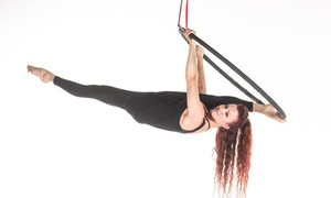 Aerobatics Performing Arts: Five Aerial Fitness Classes at Aerobatics Performing Arts (72% Off)