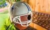 Team Sports America NFL Hanging Birdhouse