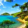 Isola d'Elba: 2 o 7 notti in bilocale con cene tipiche